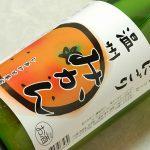 Kotani-kajitsu_0001